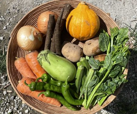 [予約/8月10日出荷]金子商店の野菜と島原そだちの麺セット(クール便・送料込)